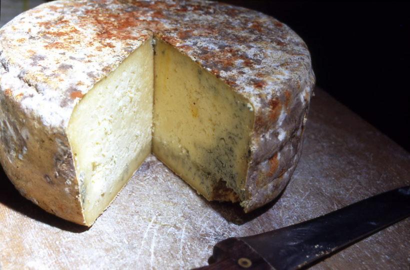 Bleu de Termignon - spécialité gastronomique de Savoie