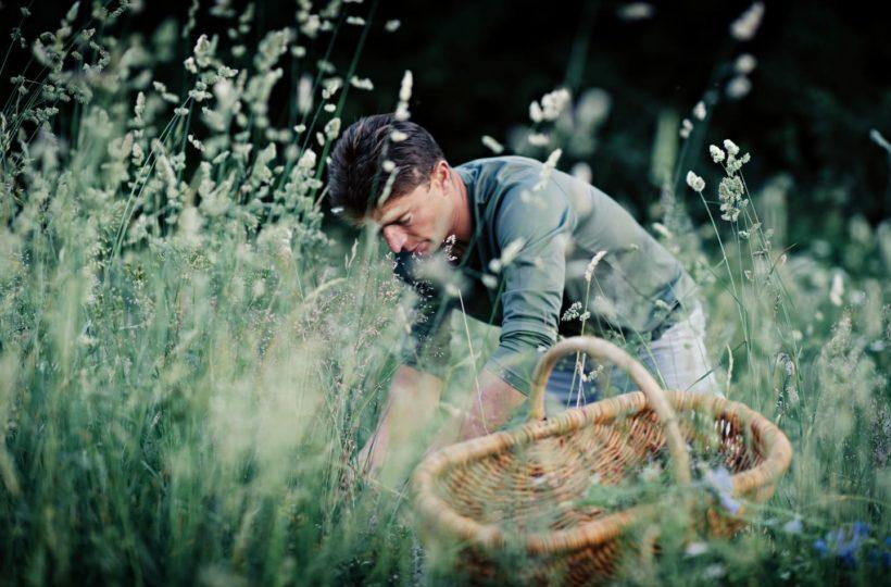 JEAN SULPICE cueillette des herbes (c) Franck Juery